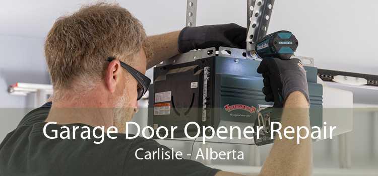 Garage Door Opener Repair Carlisle - Alberta