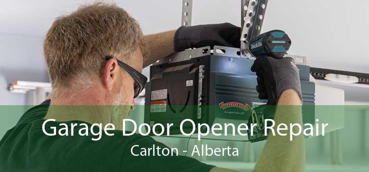 Garage Door Opener Repair Carlton - Alberta