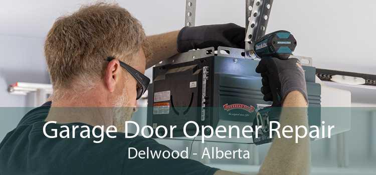 Garage Door Opener Repair Delwood - Alberta