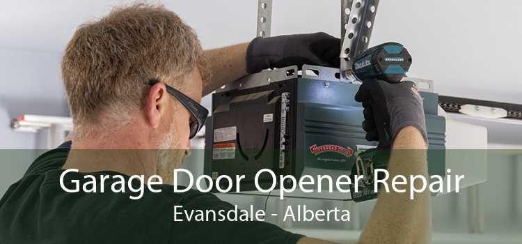 Garage Door Opener Repair Evansdale - Alberta