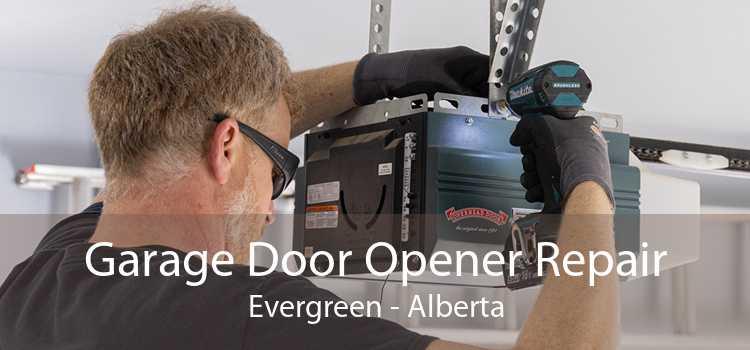 Garage Door Opener Repair Evergreen - Alberta