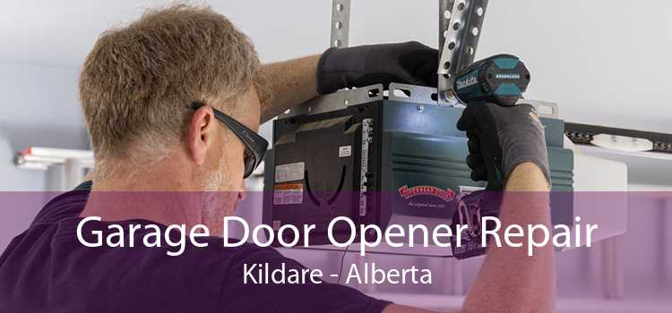 Garage Door Opener Repair Kildare - Alberta