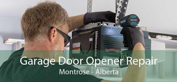 Garage Door Opener Repair Montrose - Alberta