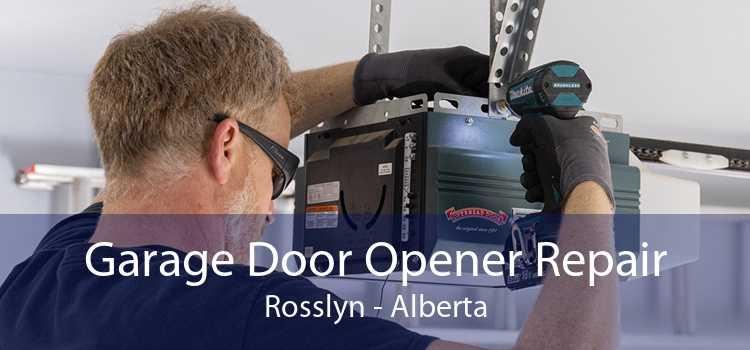 Garage Door Opener Repair Rosslyn - Alberta