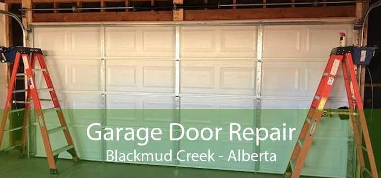 Garage Door Repair Blackmud Creek - Alberta